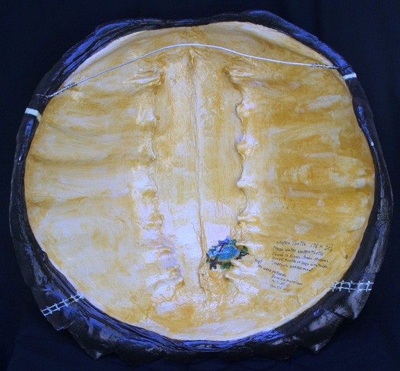 """verso """"The Old Way"""" dated 7- 7-09 by Bennie Morrison 17"""" x 18"""" varnished acrylic on found turtle shell $1300 #9944"""